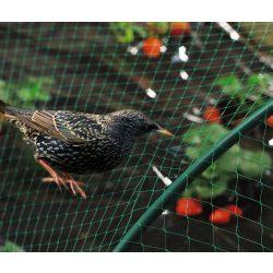 BIRDNET HDPE extrudált madárháló, rombusz szemformájú zöld 2 x 5