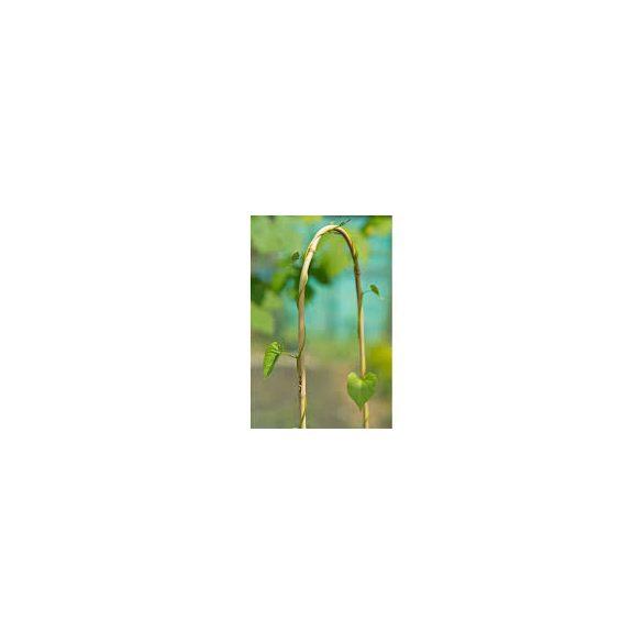 ARC BAMBOO ívelt bambuszkaró  bambusz 1,2
